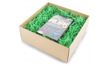 Dāvanu kastīte