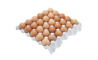 Упаковка для яиц