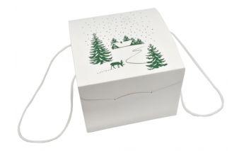 Ziemassvētku dāvanu kastīte